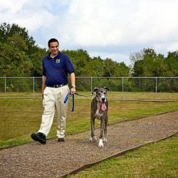 Staff walking dog at Meadowlake Pet Resort