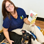 Dog Activities and Pampering
