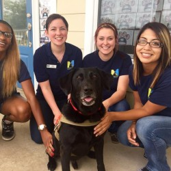 Meadowlake Pet Resort Staff with dog