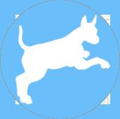 dog-icon3