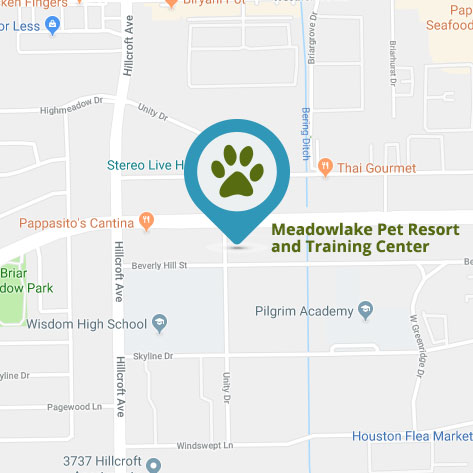 Meadowlake Galleria Location