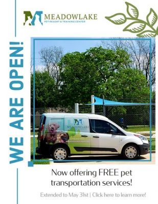 Free pet transport